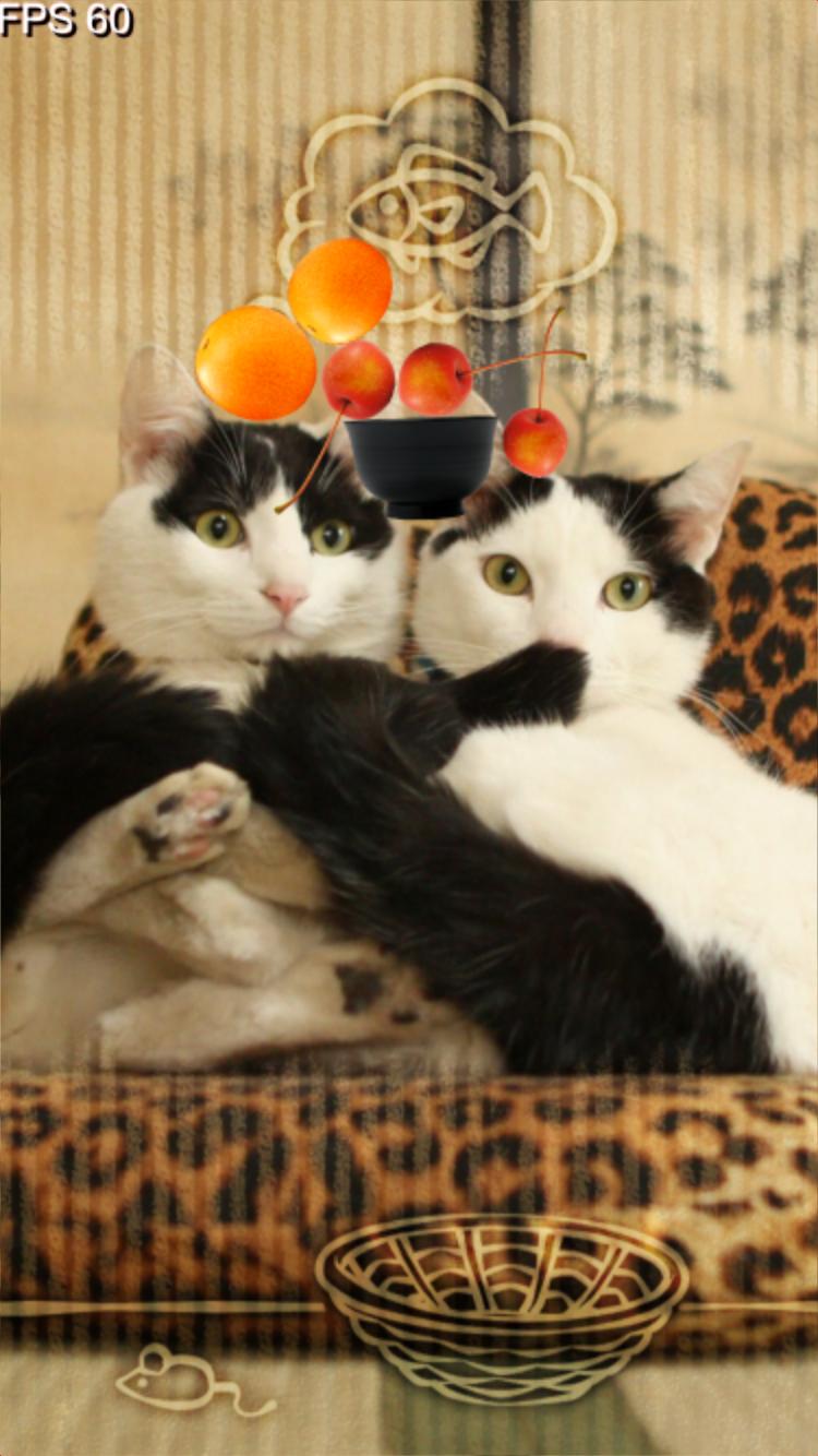 のせてのせ猫06