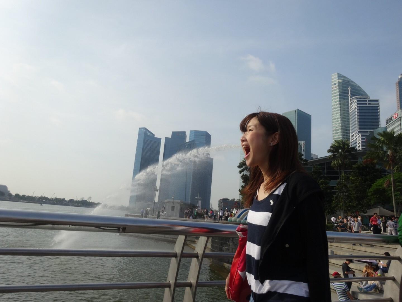 藤田シンガポール
