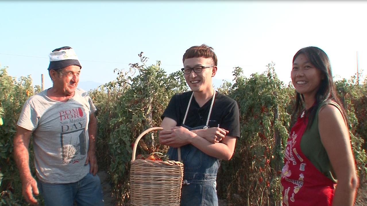 トマト農家修行①
