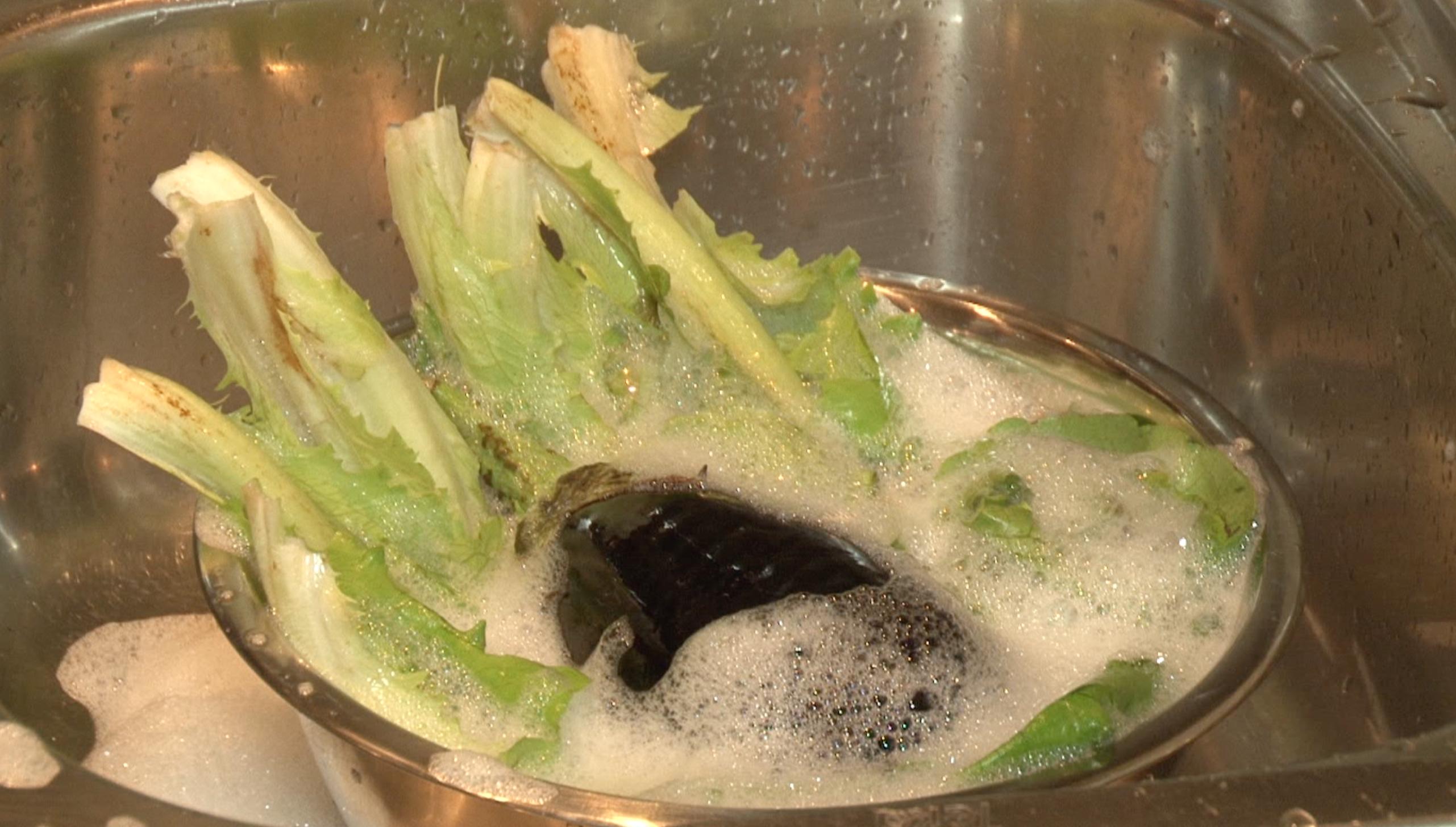 食材洗う2(チリ)